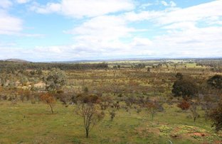 573 Stuart Mill Road, Dunolly VIC 3472