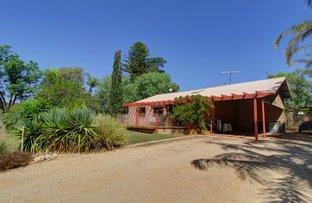 Picture of 702 Kingston Road, Moorook SA 5332