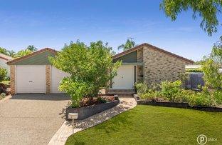 Picture of 5 Carron Court, Runcorn QLD 4113