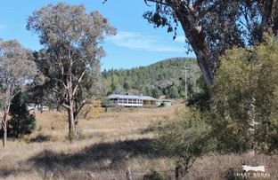 Picture of 3139 UPPER HORTON RD, Barraba NSW 2347
