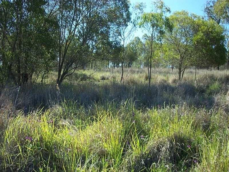 83 Acacia Drive, Ellesmere QLD 4610, Image 0