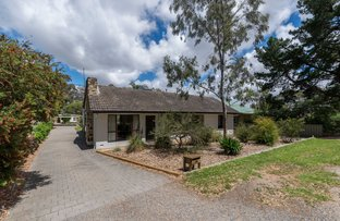 Picture of 10 Memorial Drive, Tea Tree Gully SA 5091