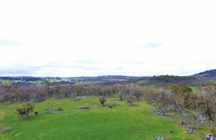 Picture of Wainui Road, Buckenderra NSW 2630