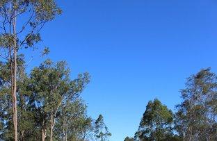 Picture of Lot 30 Packer Road, Blackbutt QLD 4314