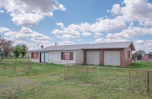 Picture of 219 Falconer Street, Guyra NSW 2365