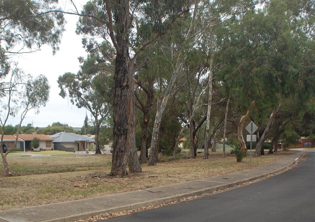 23 Nash Crescent, Morphett Vale SA 5162, Image 2
