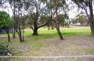 Picture of 117W North St, Walcha NSW 2354
