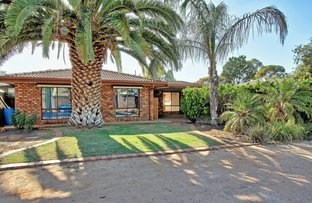 Picture of 4 Pfitzner Crescent, Loxton SA 5333