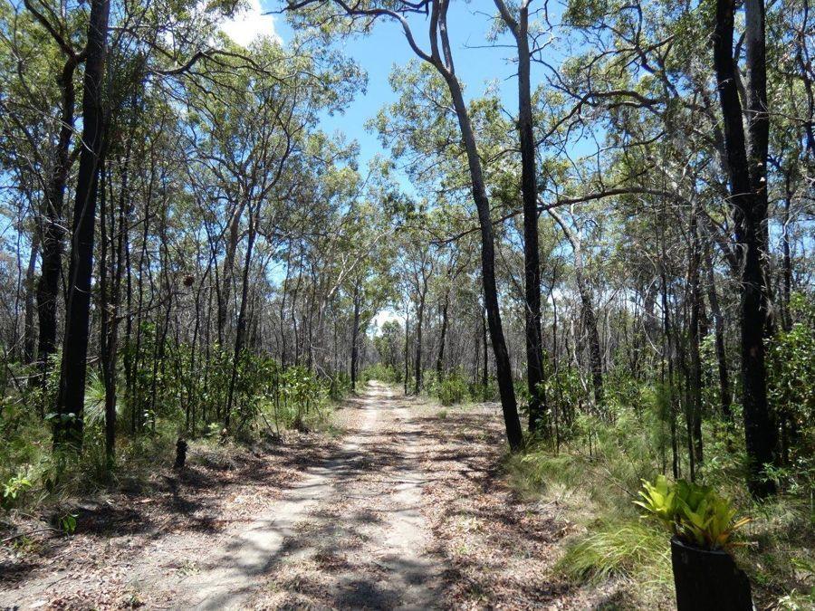 663 Matchbox Road, Deepwater QLD 4674, Image 2