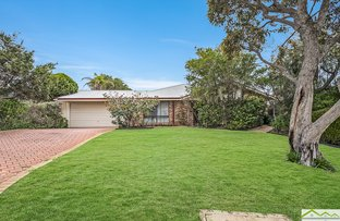Picture of 14 Throssell Place, Clarkson WA 6030