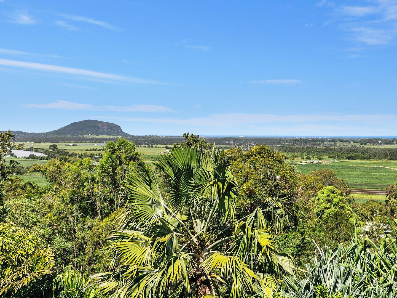 2 Dajaman Court, Maroochy River QLD 4561, Image 1