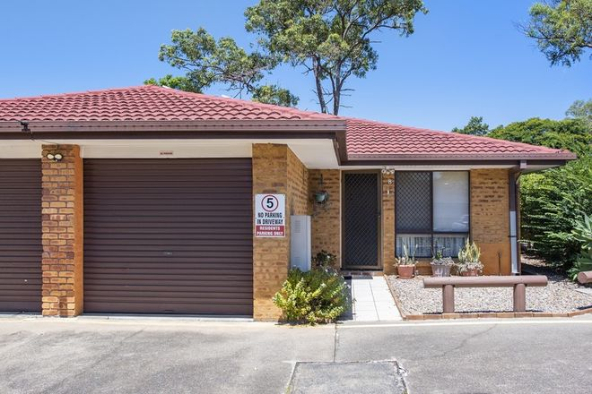 Picture of 8/7 Cleopatra Street, KINGSTON QLD 4114
