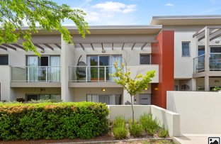 Picture of 17/311 Flemington Road, Franklin ACT 2913