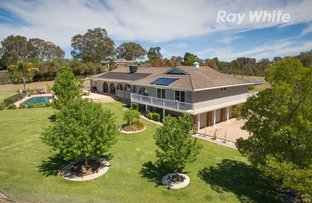 Picture of 199 Burma Road, Table Top NSW 2640