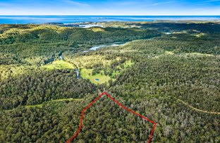 Picture of Lot 241 Cobra Road, Narooma NSW 2546