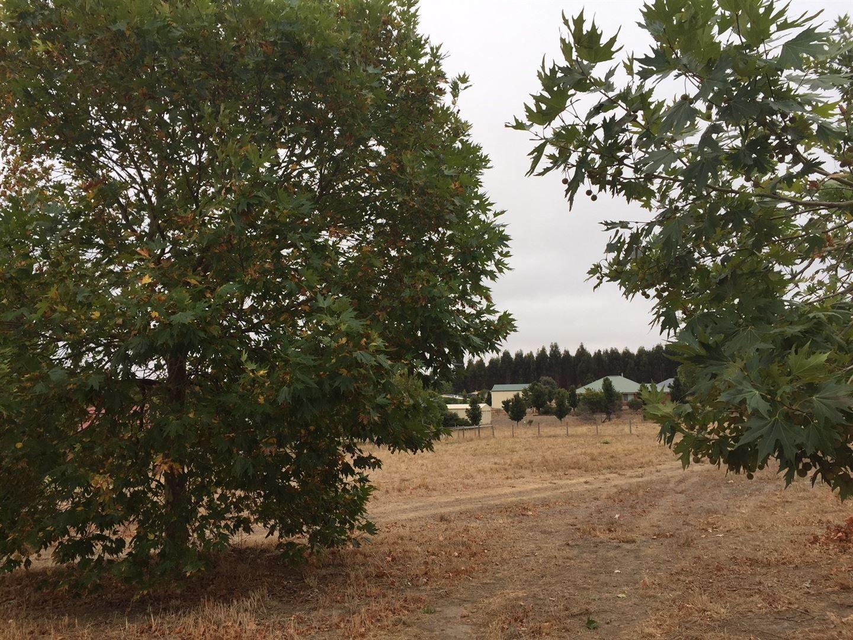 10 Gleneagles Drive, Bridgetown WA 6255, Image 0