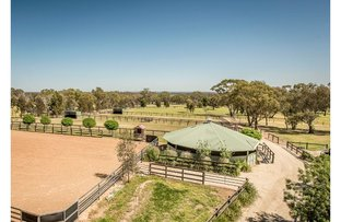 Picture of 206 Jefferies Road, Locksley VIC 3665