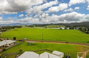 21 Williams Avenue, Yungaburra QLD 4884