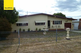 Picture of 77 Inverell Street, Ashford NSW 2361