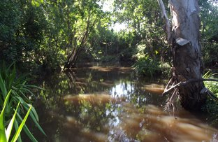 Picture of Gargett QLD 4741