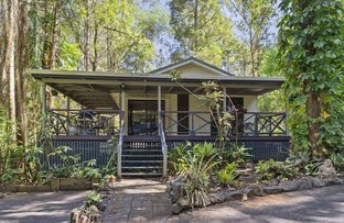 Picture of 11 Bottlebrush Court, Peachester QLD 4519