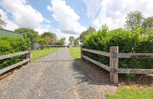 Picture of 23 Sues Road, Horse Camp QLD 4671
