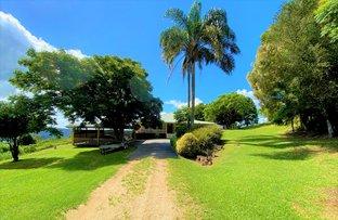 Picture of 2407 Numinbah Road, Chillingham NSW 2484