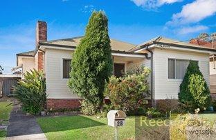 28 Delauret Square, Waratah West NSW 2298
