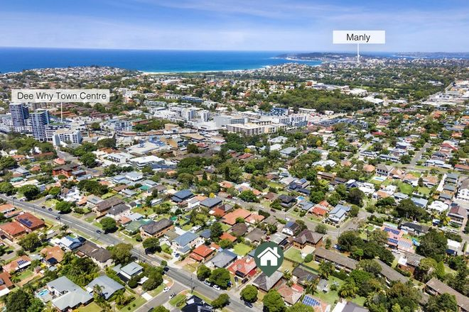 Picture of 43 Mcintosh Road, DEE WHY NSW 2099