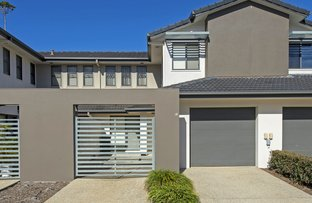 Picture of 2 Catalina Way, Upper Coomera QLD 4209