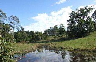 Lot 1-766 Wilson  Road, Congarinni North NSW 2447