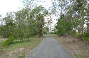 Picture of 21 Pinkwood Street, Cedar Vale QLD 4285