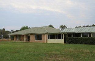 Picture of 'Holbrook' 520 Burgmans Lane, Tamworth NSW 2340