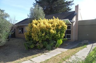 Picture of 10 Cardigan Avenue, Felixstow SA 5070