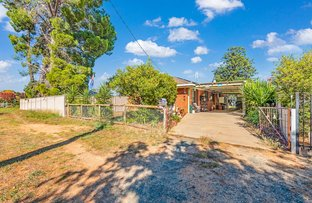 Picture of 33 Livingstone Street, Mathoura NSW 2710