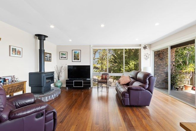 Picture of 11 Briony Place, MONA VALE NSW 2103
