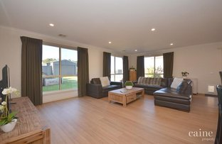 Picture of 424 Nicholson Street, Black Hill VIC 3350