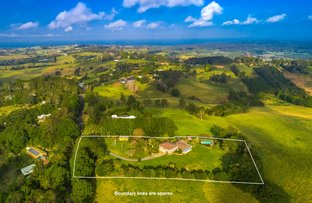451 Coopers Shoot Road, Coopers Shoot NSW 2479