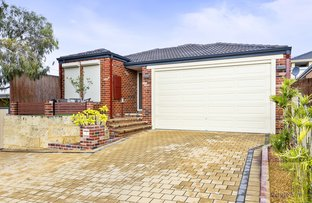 Picture of 12 Hollywood Heights, Clarkson WA 6030