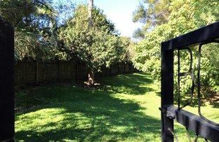 10 Felicia Court, Mountain Creek QLD 4557