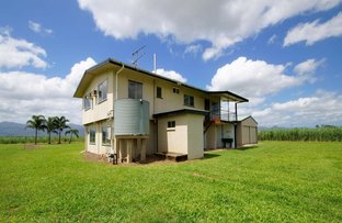 Picture of 90-96 King Road, Murrigal QLD 4854