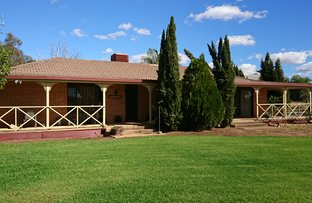 Picture of 8831 The Bogan Way, Trundle NSW 2875