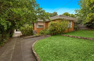 Picture of 20 Wadham Parade, Mount Waverley VIC 3149
