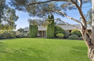 Picture of 35 Townsend Street, Renmark SA 5341