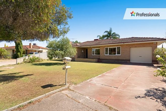 Picture of 11 Markham Place, BENTLEY WA 6102