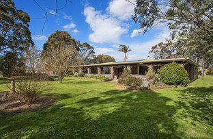 Picture of 99 Carters Road, Camperdown VIC 3260