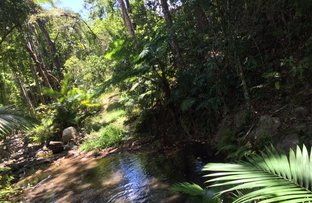Picture of 596 Gorge Road, Finch Hatton QLD 4756