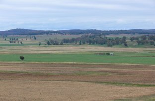 Picture of 1923 Boomley Road, Elong Elong NSW 2831