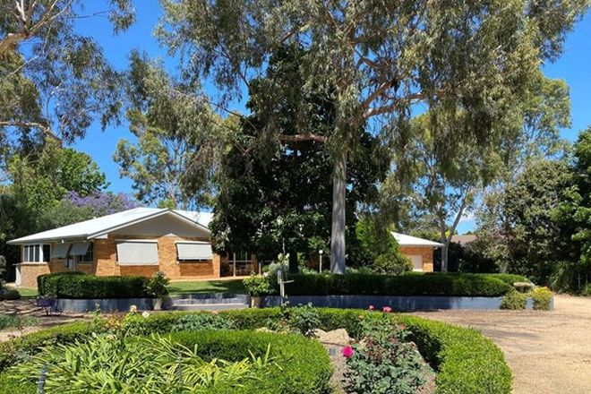 Picture of 13 Sunnyside Road, MOREE NSW 2400