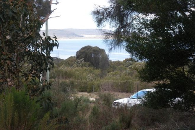 Picture of 8843/1 West End Road, Pine Scrub, Tanners Bay, LEEKA TAS 7255